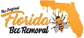 Florida Bee Removal