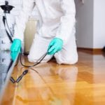 Licensed Exterminator in Lakeland, Florida