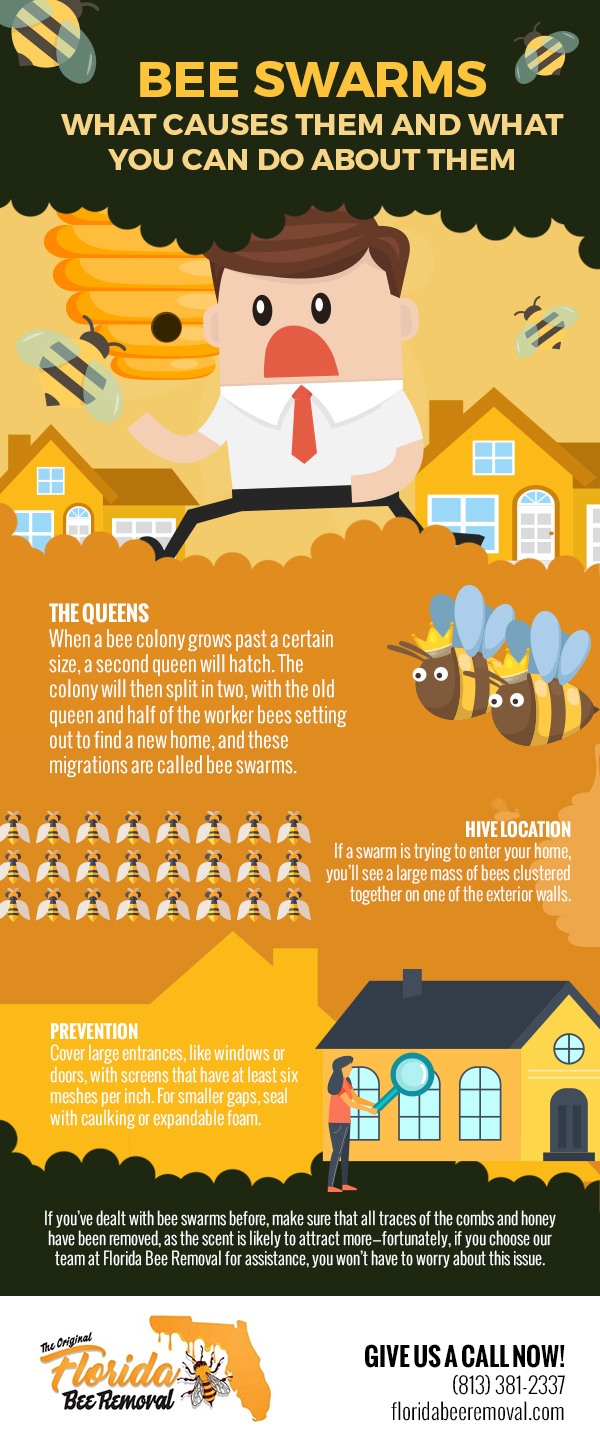 Bee Swarms: What Causes Them and What You Can Do About Them